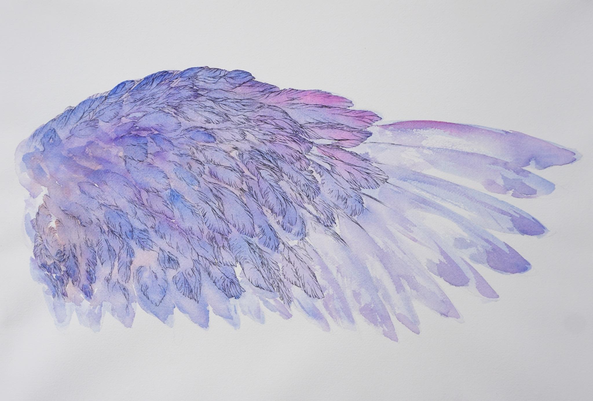 L'oiseau bleu -Mytyl l'aile droite - art by NephilimK