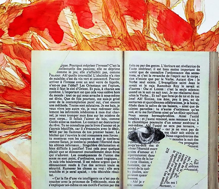ixtine-roman de la vie cérébrale art-des-figures-litteraires-by-marie-catherine-arrighi--ref-littéraire-zomm-sur-le-livre-de-remy-de-gourmont-