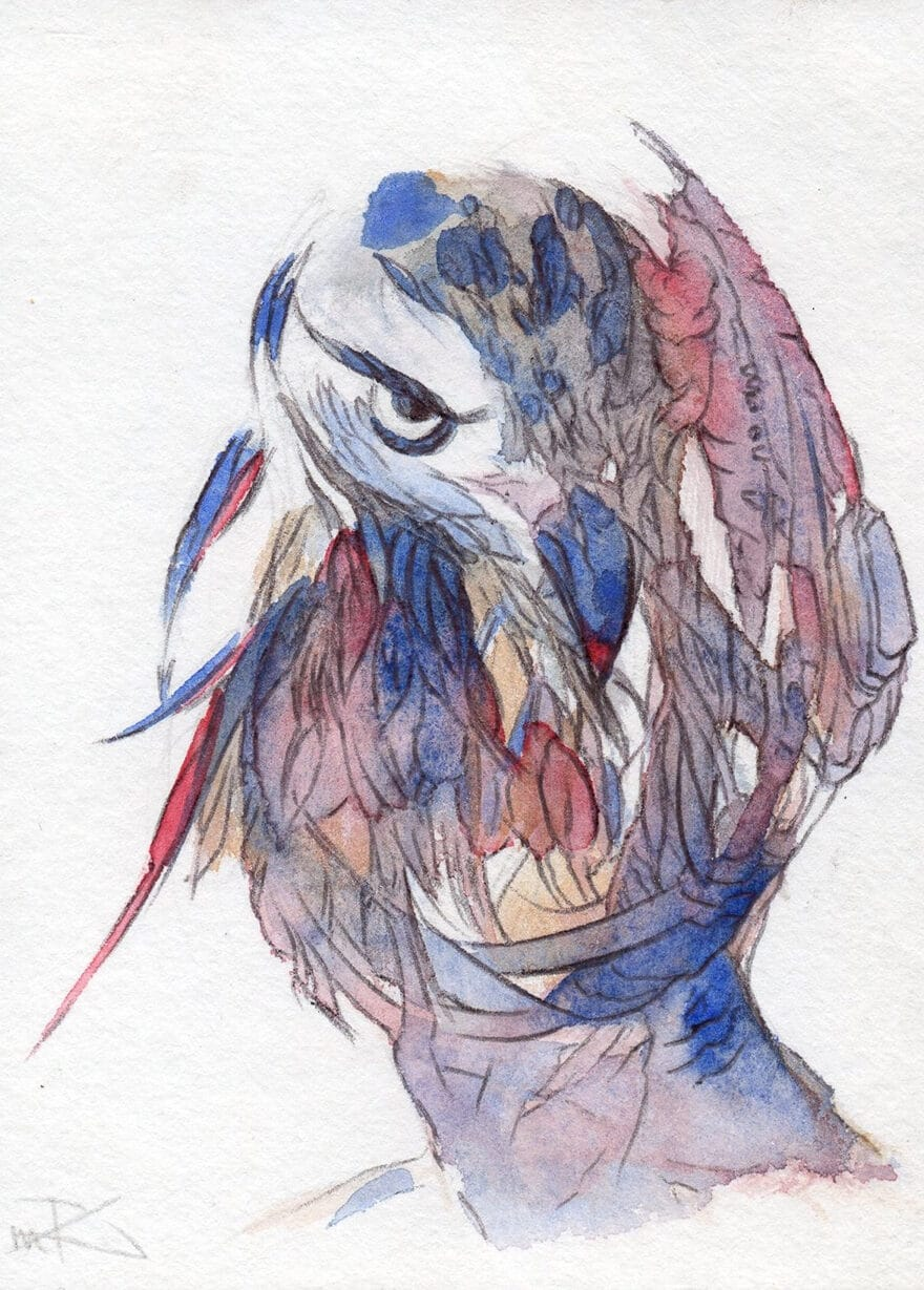 Cou Cou - Marie-Catherine Arrighi - artiste peintre corse- CouCou BonJour- dessin contemporain-illustrateur couverture livre