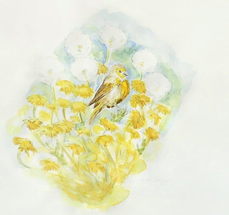 marica arrighi-aquarelle oiseau-Je suis serin, tu es serin- -aquarelle originale
