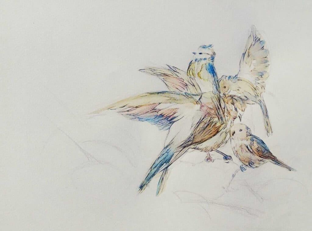 A tire-d'aile - illustration dessin d'art contemporain Marie K Arrighi